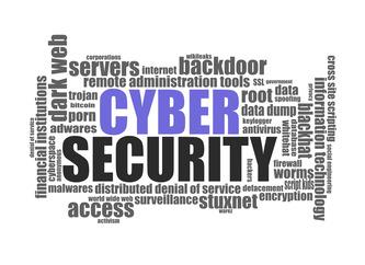 Top 20 Cyber Security Vulnerabilities